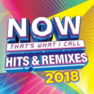 Various Artists - Now Thats What I Call Hits And Remixes